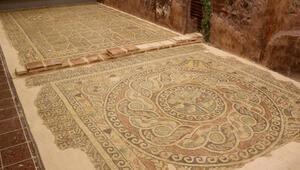 Kaçak kazıda ortaya çıkan 1800 yıllık 'elma mozaiği' sergileniyor