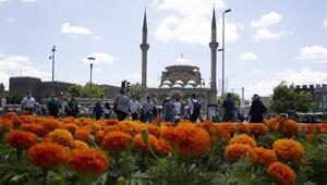 Büyükşehir Belediyesi, çiçek ekimleriyle şehri güzelleştiriyor