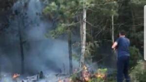 Bilecik'te orman yangını büyümeden söndürüldü