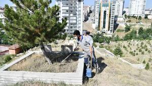 Mamakta mezarlıklarda bayram temizliği