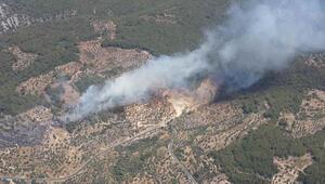 Orman Genel Müdürlüğü: Bir günde 15 noktada orman yangını çıktı