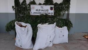 Kiliste uyuşturucu operasyonu