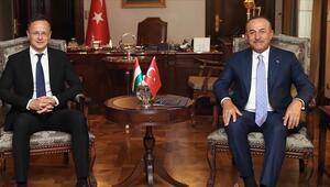 Türk Konseyinin gözlemci üyesi Macaristan, Türk dünyası ile güçlü bağlar kuruyor