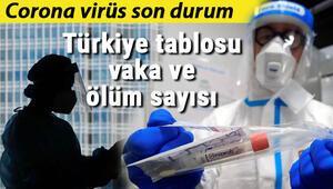 30 Temmuz koronavirüsü (Covid 19) Türkiye tablosu vaka sayısı: Coronavirüs dünya genelinde son durum nedir İşte korona virüs haritası