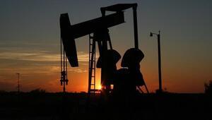 Brent petrolün varili 43,88 dolar