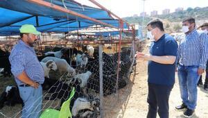 Tütüncü: Kepezin kurban pazarları bayrama hazır