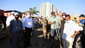 Başkan Palancıoğlu, kurban pazarını denetledi
