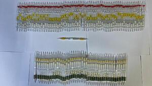 Otogarda ele geçirildi 115 tüp kobra yılanı zehri…