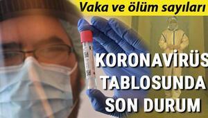 1 Ağustos Koronavirüs (coronavirüs) Türkiye tablosu Vaka ve ölüm sayısı: İstanbul, Ankara ve tüm bölgelerin günlük corona virüs vaka sayıları