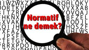Normatif ne demek Normatif nedir Normatif TDK kelime anlamı