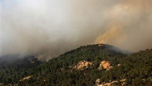 Aydında başlayıp Muğlaya kadar ulaşan orman yangınını söndürme çalışmaları sürüyor