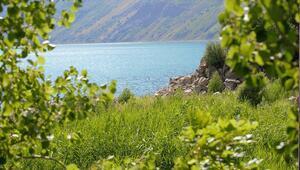 Nemrut Krater Gölü tarihinin en kalabalık günlerini yaşıyor