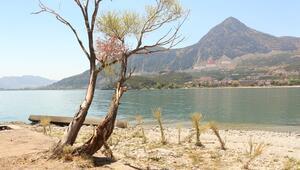 Eğirdir Gölünde 11 yıldaki su kaybı miktarı, 100 kilometrekareye yaklaştı