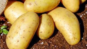 Kibrit patates nedir, nasıl yapılır Kibrit patates tarifi