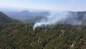 Son dakika... Antalyada orman yangını