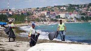 Tekirdağın tatil beldesinde 500 ton çöp toplandı