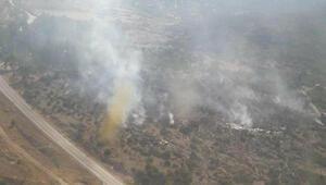İzmirde ormanlık alanda çıkan yangın kısa sürede kontrol altına alındı