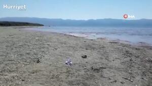 İznik Gölü bu yılda 20 metre çekildi