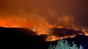 Sınırda yangın alarmı 32.6 kilometrelik güvenlik şeridi oluşturuldu