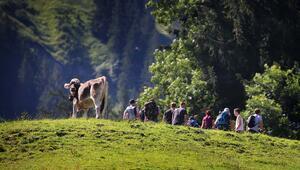 Turizm gelirleri bekleneni karşılamadı
