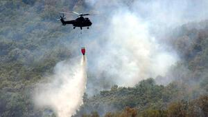 Bulgaristan sınırındaki orman yangınında son durum