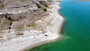 O dönemin Afrikasıydı...Bulunan fosiller Anadolu tarihine ışık tutuyor