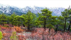 Amanoslar nerede Amanos (Nur) Dağları'nın konumu