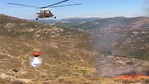 Bodrumda 3 hektar makilik yandı