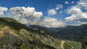 ABD'de alarm 3 eyalette orman yangınları sürüyor