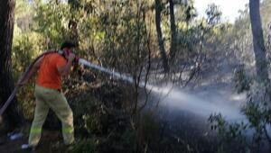 Aydos Ormanının iki farklı noktasında çıkan yangın söndürüldü