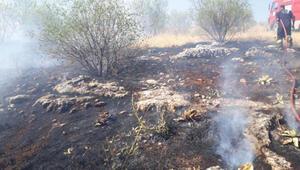 Adıyamanda ormanlık alandaki yangında badem ağaçları zarar gördü