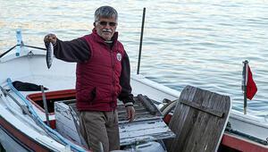 Zonguldakta çapari ile palamut avı başladı