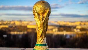 FIFA Dünya Kupası Afrika Elemeleri 2021e ertelendi