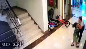 Köpeğiyle oynadığı için komşu çocuğunu darp etti