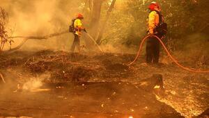 ABDde orman yangınlarına müdahale eden helikopter düştü, pilot öldü