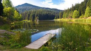 Orta ve Batı Karadeniz'in en güzel 10 yaylası