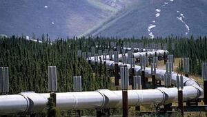 Doğal gaz ne zaman kullanılacak ve nerede bulundu Cumhurbaşkanı Erdoğandan son dakika doğal gaz açıklaması