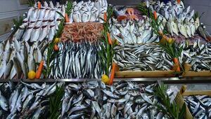 İstanbullu balıkçılar vira bismillah demeye hazırlanıyor