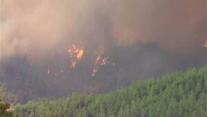 Adanada orman yangını Bazı evler boşaltıldı