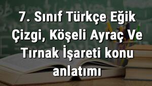 7. Sınıf Türkçe Eğik Çizgi, Köşeli Ayraç Ve Tırnak İşareti konu anlatımı