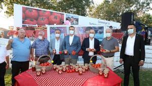Lezzetli domatesin şifresi toprak analizi