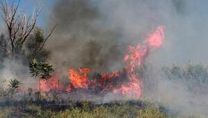 Burdur Gölü kıyısındaki sazlık alanda yangın
