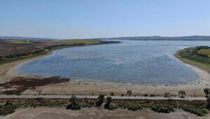 Sular çekildi, Büyükçekmece Gölünde korkutan görüntü