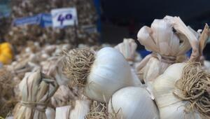 Korona etkisi ve üretim azlığıyla sarımsak fiyatlarında artış bekleniyor