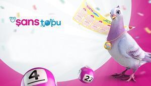 26 Ağustos Şans Topu sonuçları belli oldu Şans Topu sonuç sorgulama ekranı millipiyangoonline.comda