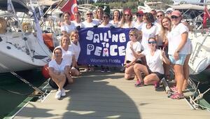 Barışa yelken