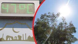 Sıcaklar 47 dereceyi aştı, vatandaş çözümü bunda buldu