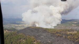 Ankaradaki orman yangını kontrol altına alınmaya çalışılıyor
