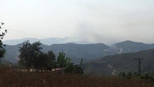 Hatayın Suriye sınırındaki orman yangını sürüyor