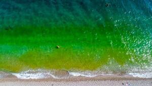 Deniz yeşile döndü, tatilciler korktu